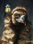 Vulture and Bluetit