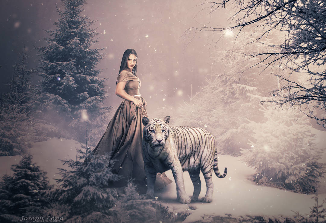Lady and the White Tiger