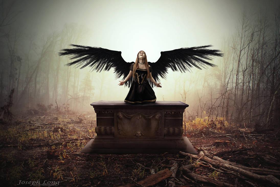 Dark Angel Rises