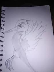 Bird? by WolfgirllovesPrince