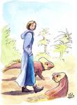 Thirteen walking with protoceratops