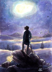 The wanderer under the sea of stars