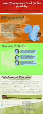 Infographic for Best Online Expense tool-Nutcache