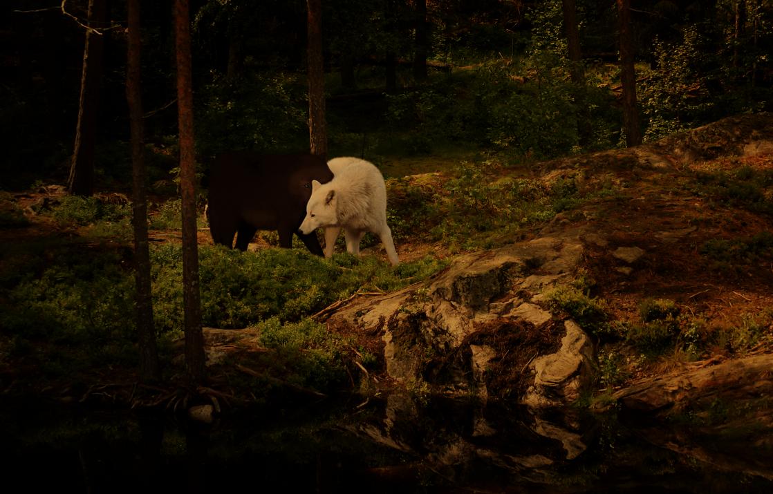 We found each other in the dark by Eldarwen5