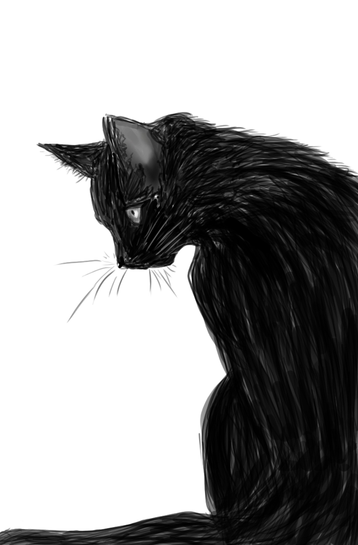 The Black Cat by Blair-Piasdottir