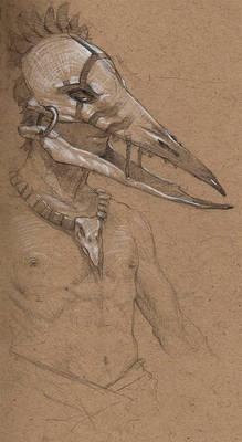 Chalk Beak