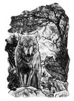 Owl and Wolf by dcbats2000
