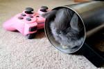 Gamer Bunny