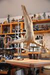 gymnast almost fin 1