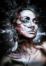 Digital Decade II by TheUnknownBeing