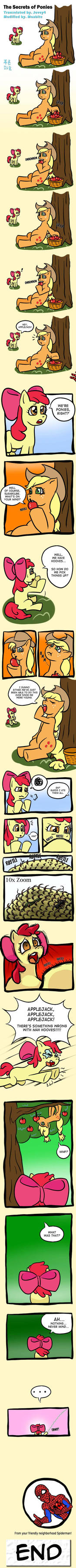 The Secrets of Ponies translated ver. by mrs1989