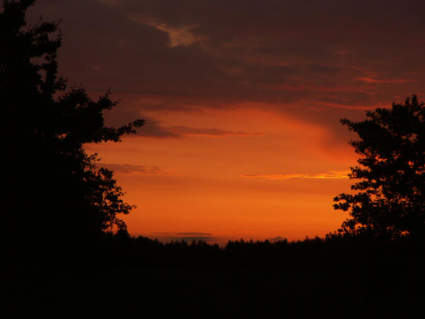 Red sky by Queen88