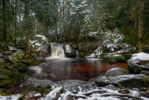 Black Forest Pool