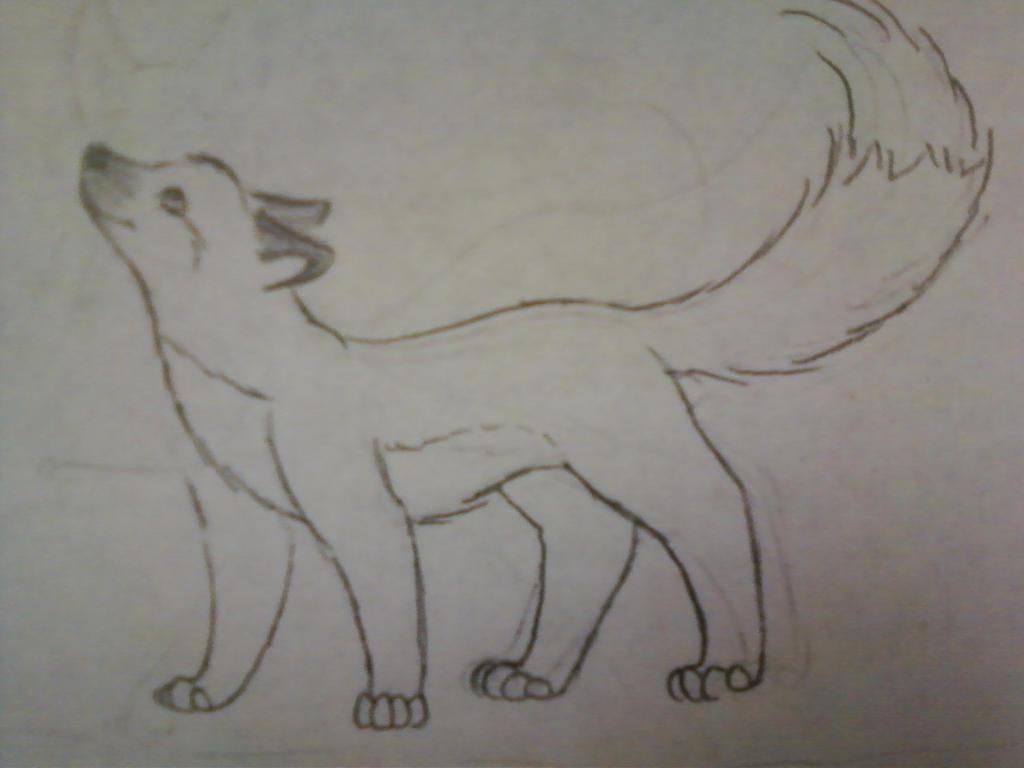 Fox by JenniferBee