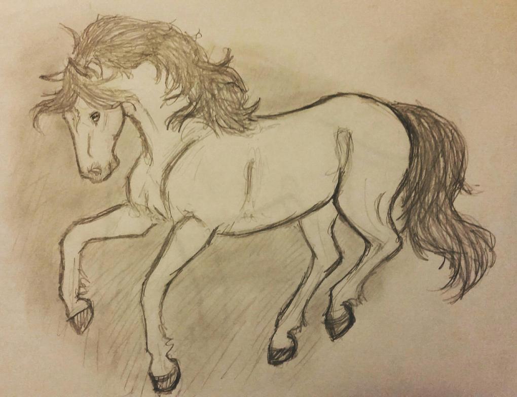 Sketchy Sketchy by JenniferBee
