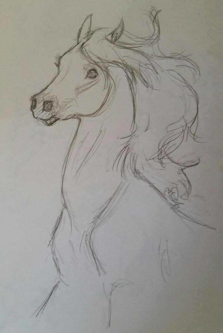 Sketch by JenniferBee
