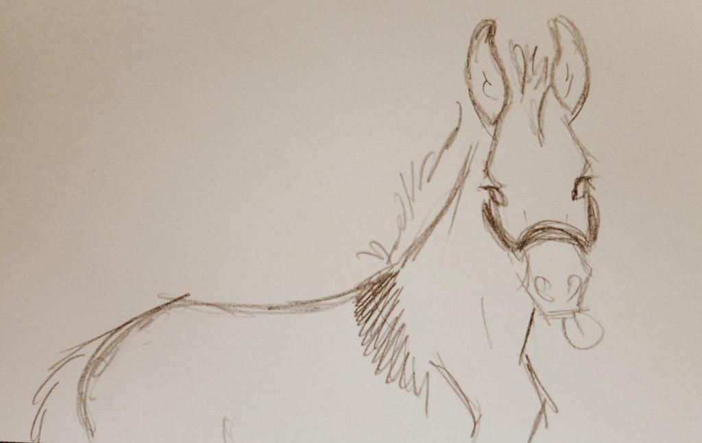 Sassy Mule by JenniferBee