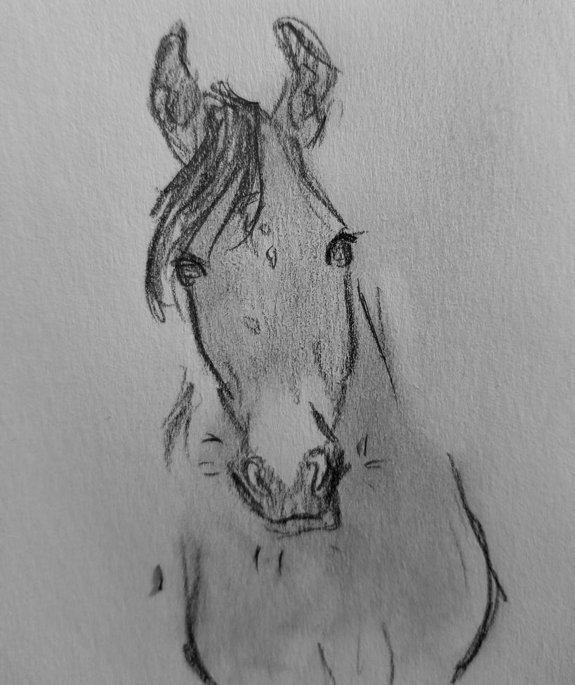 Ears? by JenniferBee