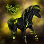 Wilkenburg's Hardstyle Raver