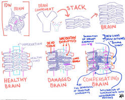 TF brain sketch