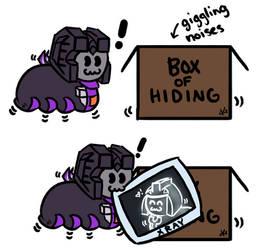 Box Of Hiding