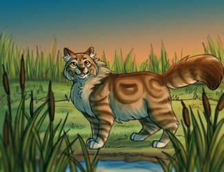 Midsummer Dusk / Mothwing by paintedpaw-cat