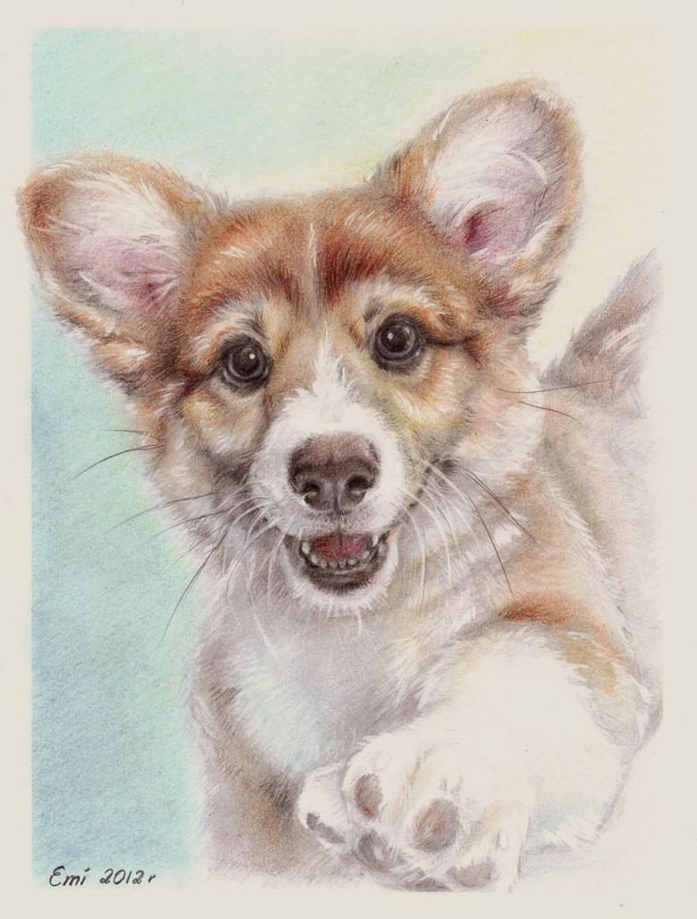 Puppy by Ninsianna