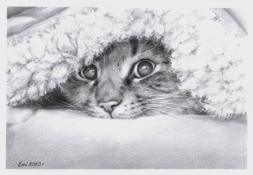 B/W CAT by Ninsianna