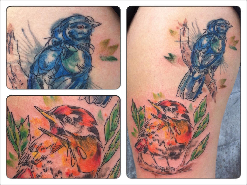 Birds by Tat1onu