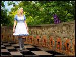 Find the way in wonderland?