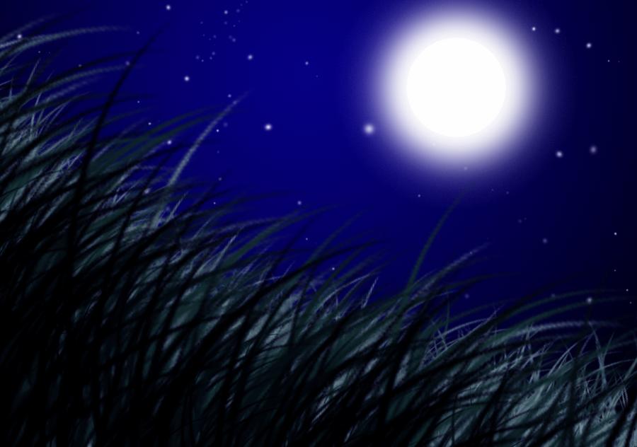 Background Practice 6 by unicorn-skydancer08