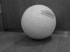 volleyball by Dancestef