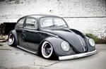 Hoodride Beetle