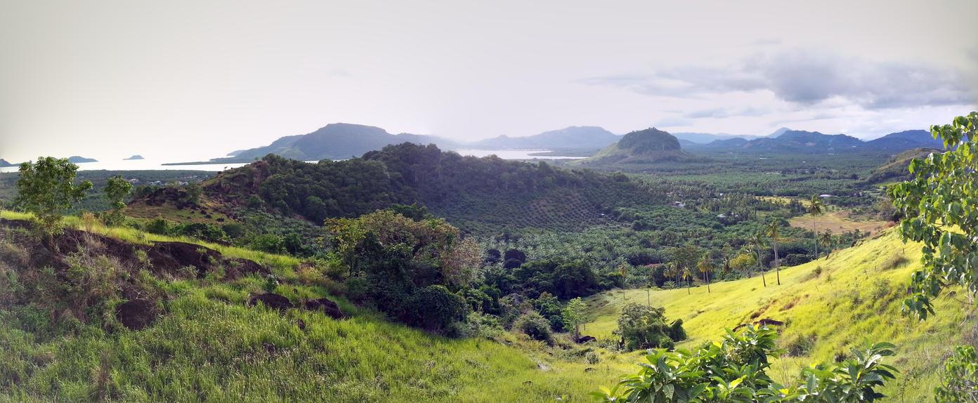 Phenomenal Borneo by nubpro