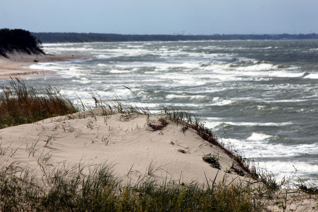 Coast of Curonian Spit. by GrayLynx