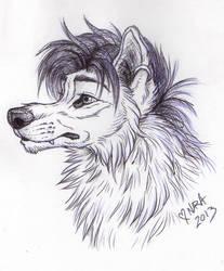 Wildhoney sketch by naravox