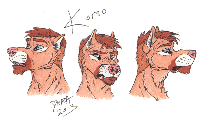 Some Korso hedds by naravox