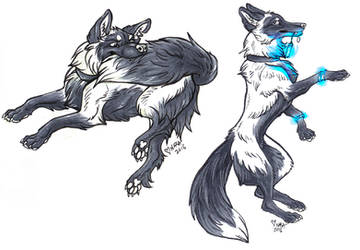 More foxes