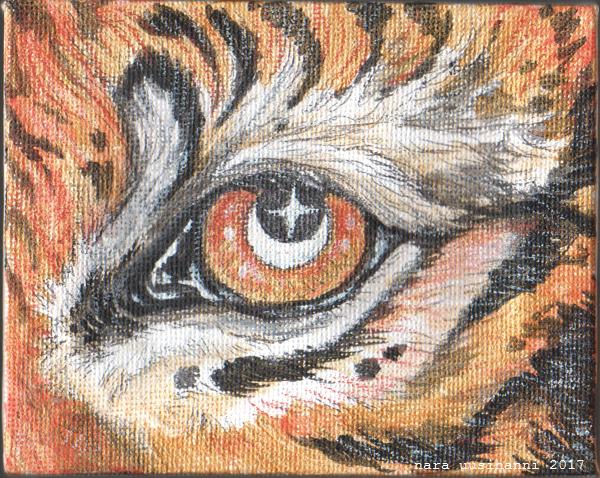 Tiger Eye Mini by naravox