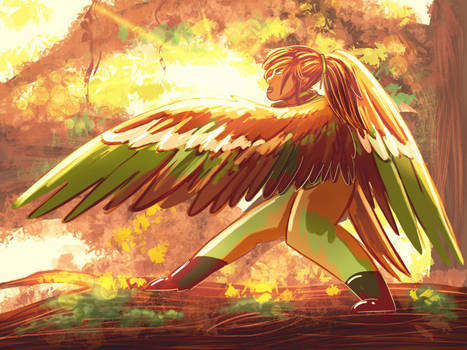 Ava's Wings