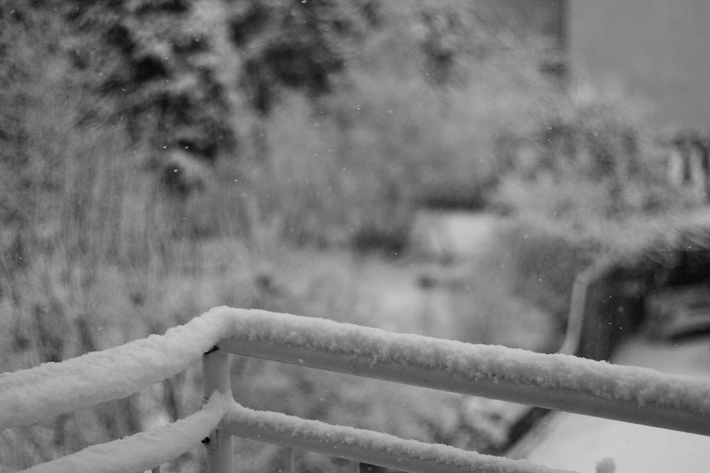 Winter 1 by kusoka