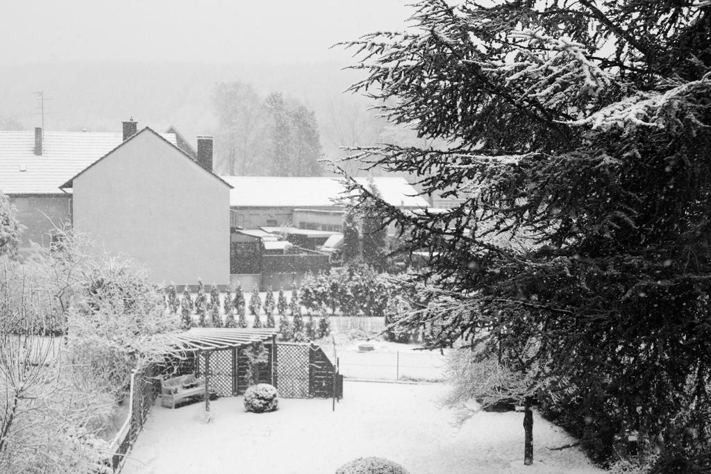 Winter 4 by kusoka
