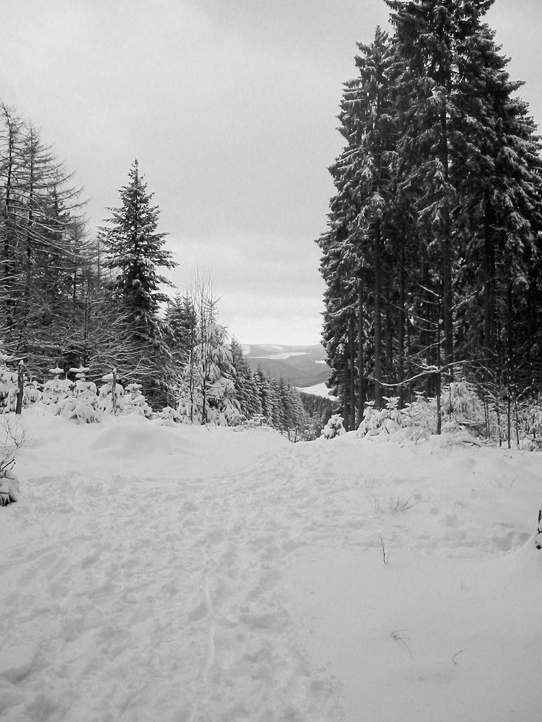 Winter 5 by kusoka