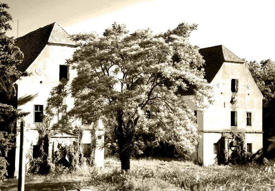 Banloc castle by bobby-rex