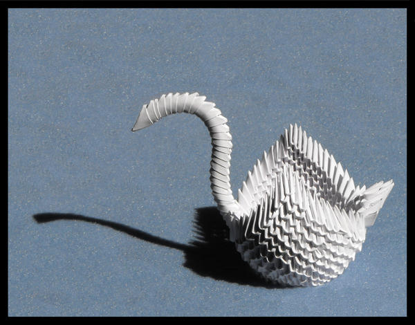 3D Swan by Morzsi