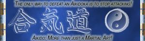 Aikido Banner by evileva