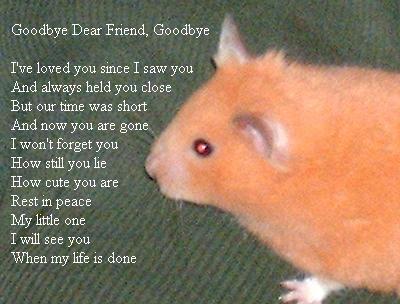 Goodbye Dear Friend, Goodbye by warringsoul