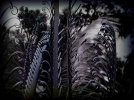 Dreaming a Nightmare of Fern by ZeroClimate