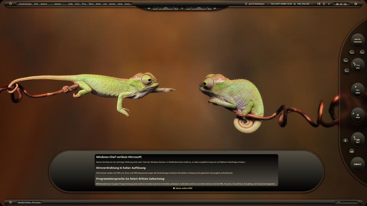 Chameleon Desk by LaGaDesk