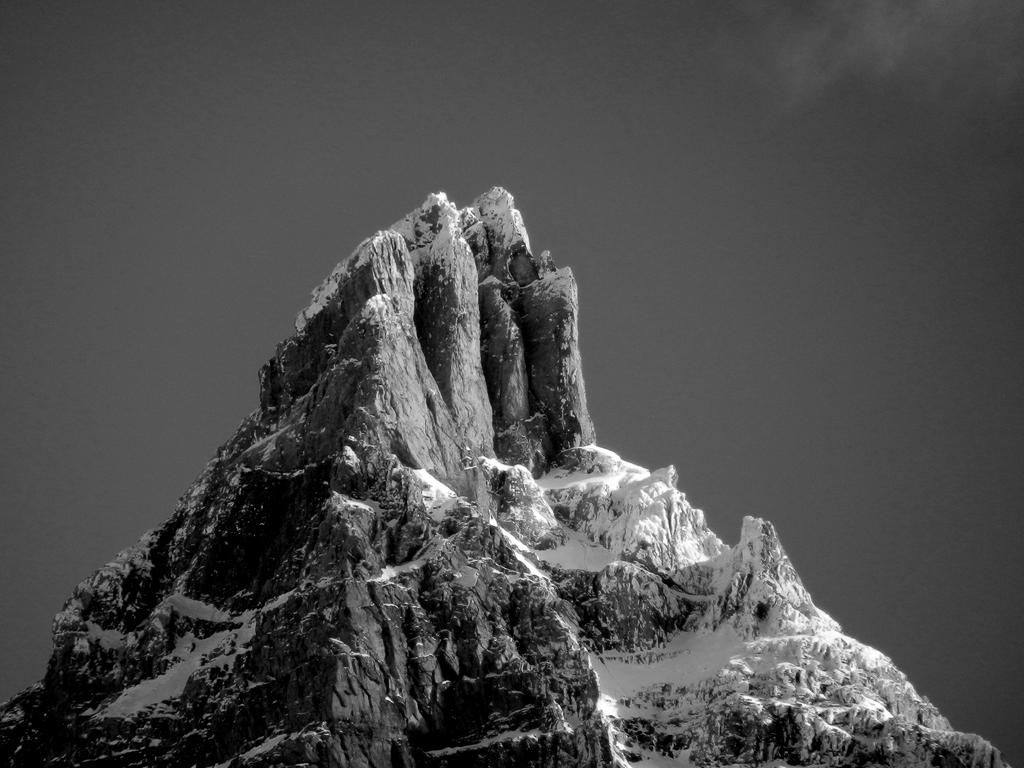 Monochrome by artamusica